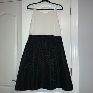 NWT Women's Calvin Klein Fit and Flare Size 14